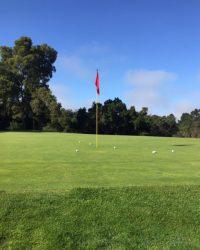 Golf Proformance